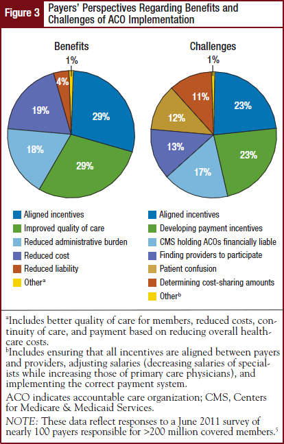 Payers' Perspectives Regarding Benefits and Challenges of ACO Implementation