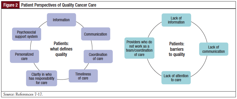 Figure 2: Patient Perspectives of Quality Cancer Care.