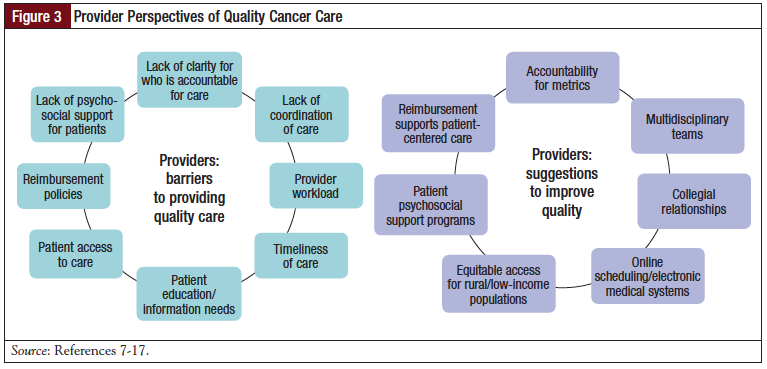 Figure 3: Provider Perspectives of Quality Cancer Care.
