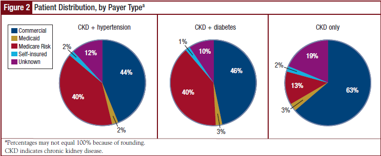 Patient Distribution, by Payer Type